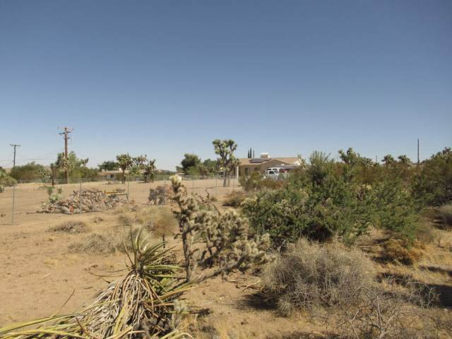 8066 Sage Avenue, Yucca Valley, CA 92284 (#219052020DA) :: RE/MAX Masters