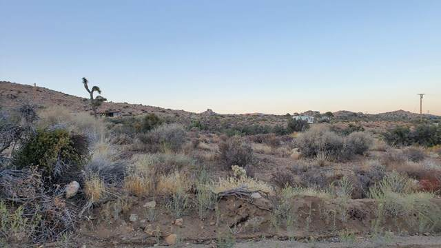 0 Burns Canyon Rd Road, Pioneertown, CA 92268 (#219052065DA) :: The Miller Group