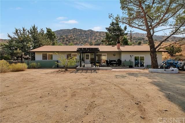 940 E Soledad Pass Road, Acton, CA 93510 (#SR20226701) :: Zutila, Inc.
