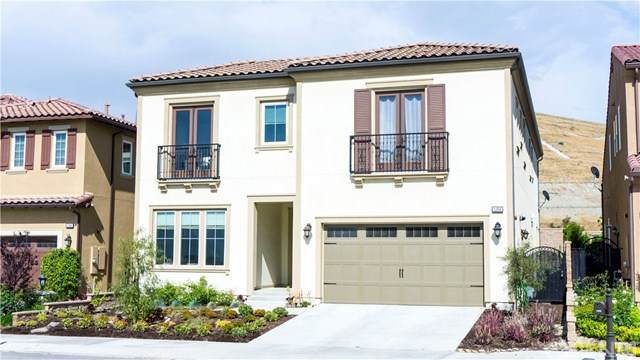 11856 Ricasoli Way, Porter Ranch, CA 91326 (#SR20225490) :: The Results Group
