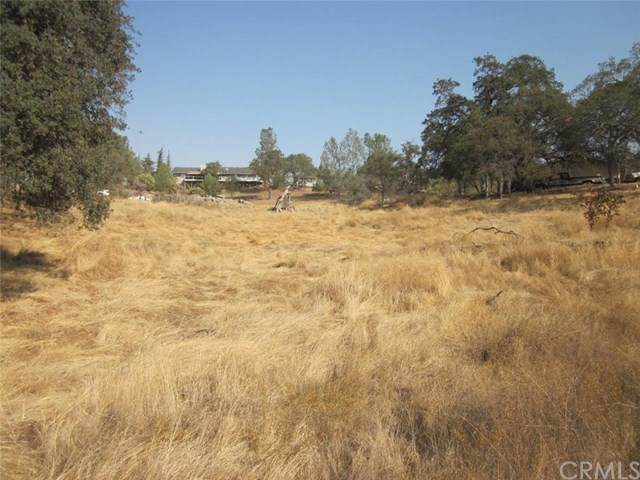 0-1.07AC Holiday Drive, Coarsegold, CA 93614 (#FR20227674) :: Wendy Rich-Soto and Associates