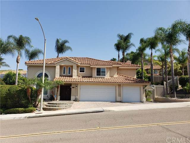 3859 Dawsonia Street, Bonita, CA 91902 (#PW20226805) :: American Real Estate List & Sell