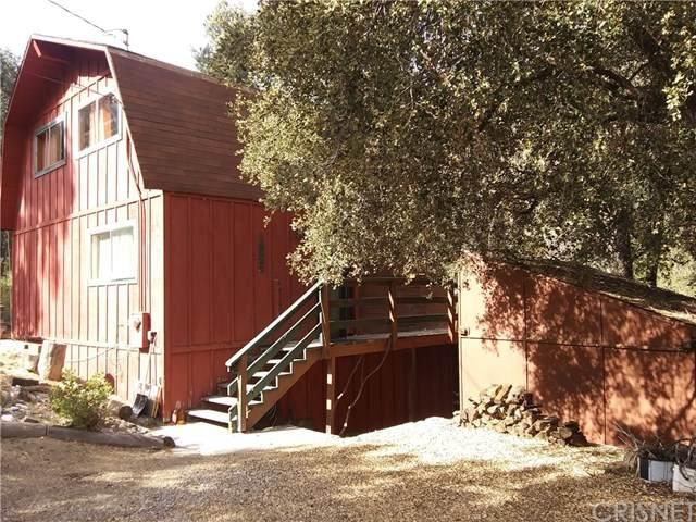 15325 San Moritz Drive, Pine Mountain Club, CA 93222 (#SR20227357) :: Team Forss Realty Group