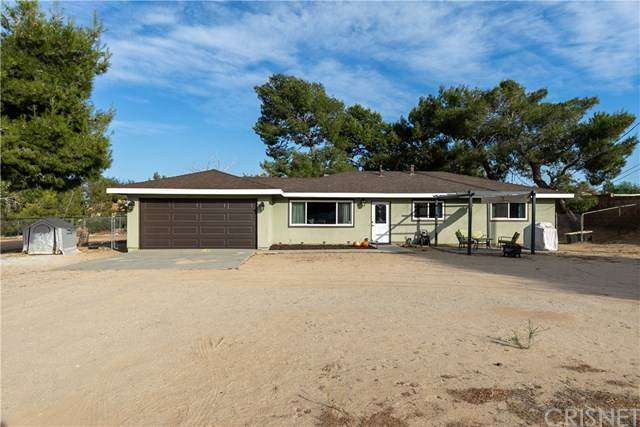 42848 48th Street W, Lancaster, CA 93536 (#SR20228319) :: Twiss Realty