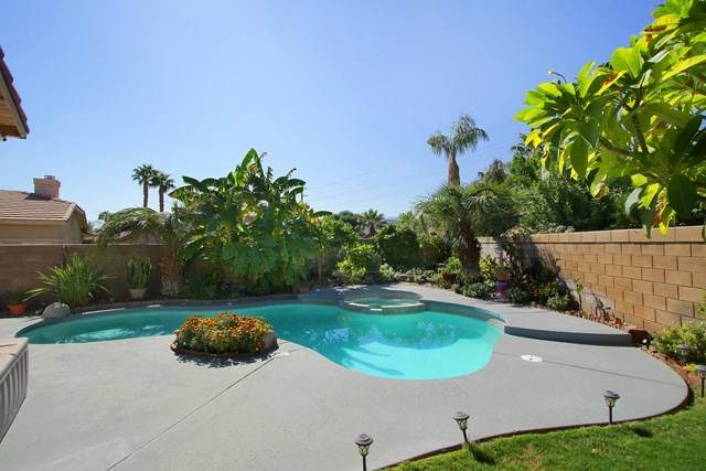 79115 Diane Drive, La Quinta, CA 92253 (#219052185DA) :: Veronica Encinas Team