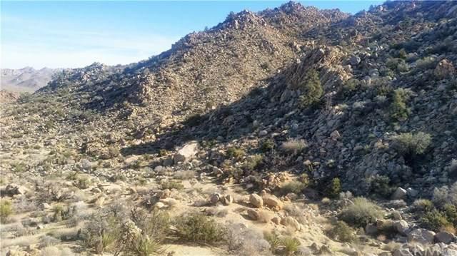 8900 Sunset Road, Joshua Tree, CA 92252 (#JT20228805) :: A G Amaya Group Real Estate