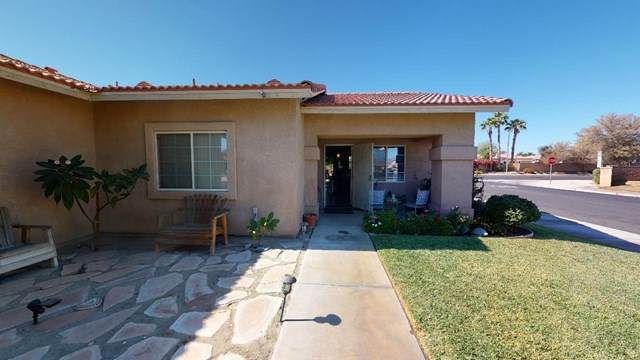43435 Roebelenii Way - Photo 1