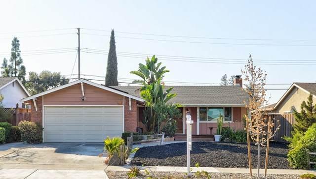 440 Skyway Drive, San Jose, CA 95111 (#ML81818151) :: Doherty Real Estate Group