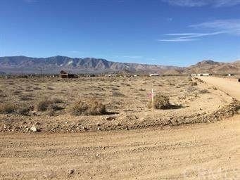 0 Lake Street, Lucerne Valley, CA 92356 (#CV20229826) :: The Results Group