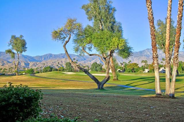 743 Inverness Drive, Rancho Mirage, CA 92270 (#219052305DA) :: Team Forss Realty Group