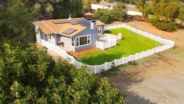 2838 Willow Glen Drive, El Cajon, CA 92019 (#OC20228340) :: Better Living SoCal