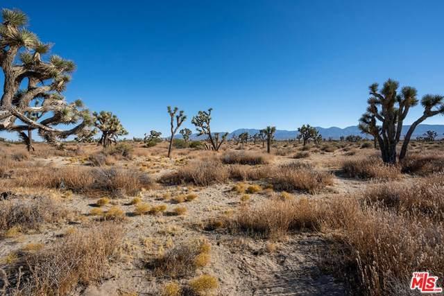 0 125Th Ste Nog /Vic A, Sun Village, CA 93543 (MLS #20653264) :: Desert Area Homes For Sale