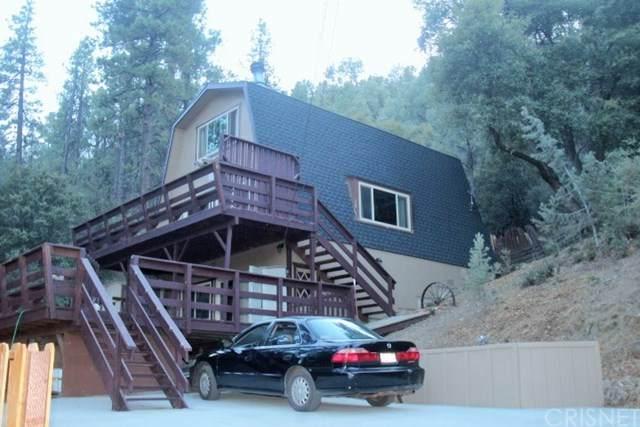 2101 Freeman Drive, Pine Mountain Club, CA 93225 (#SR20231515) :: Z Team OC Real Estate