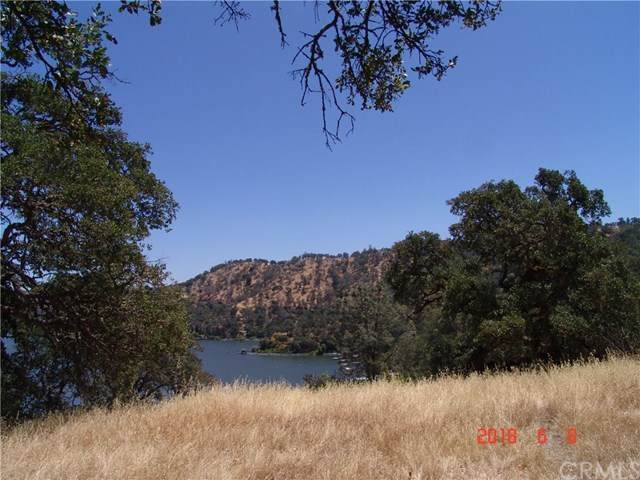 11150 North Drive, Clearlake, CA 95422 (#LC20232093) :: Steele Canyon Realty