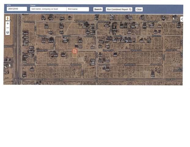 0 Evergreen Avenue, California City, CA 93505 (#CV20234077) :: Z Team OC Real Estate