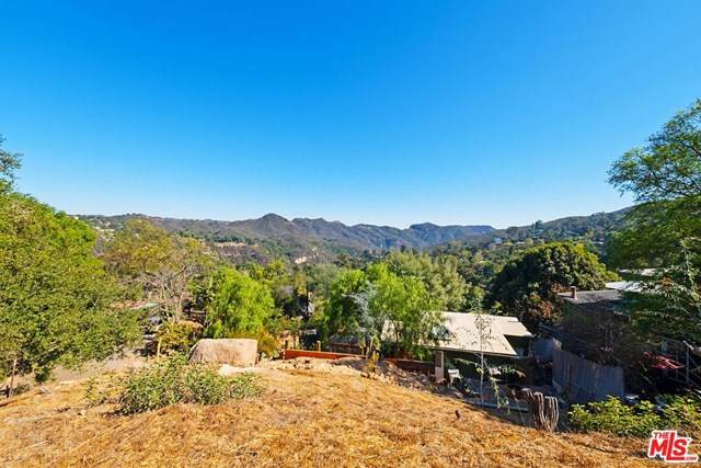 0 Skyline Trail, Topanga, CA 90290 (#20656510) :: American Real Estate List & Sell