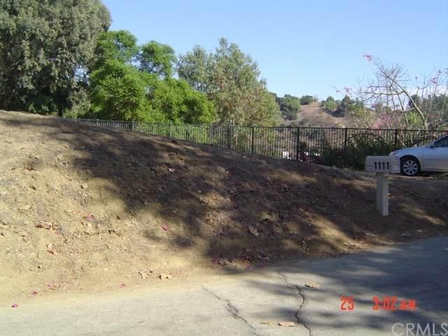 1111 Pinto Drive, La Habra Heights, CA 90631 (#PW20234107) :: Steele Canyon Realty