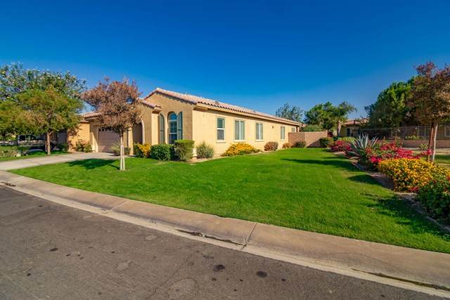 49930 Pacino Street, Indio, CA 92201 (#219052771DA) :: The Costantino Group | Cal American Homes and Realty