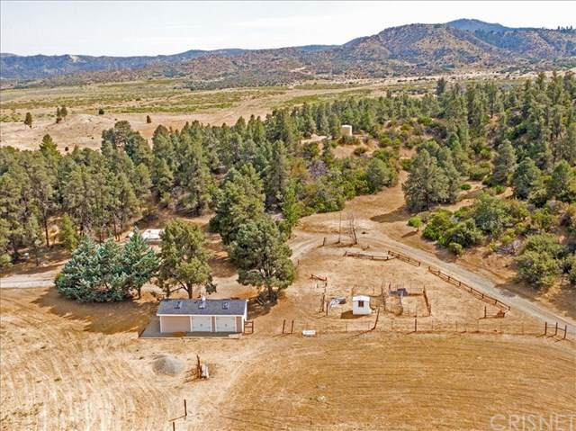 13224 Boy Scout Camp Road, Frazier Park, CA 93225 (#SR20236116) :: American Real Estate List & Sell