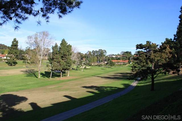 546 San Andres Drive, Solana Beach, CA 92075 (#200051241) :: Bathurst Coastal Properties