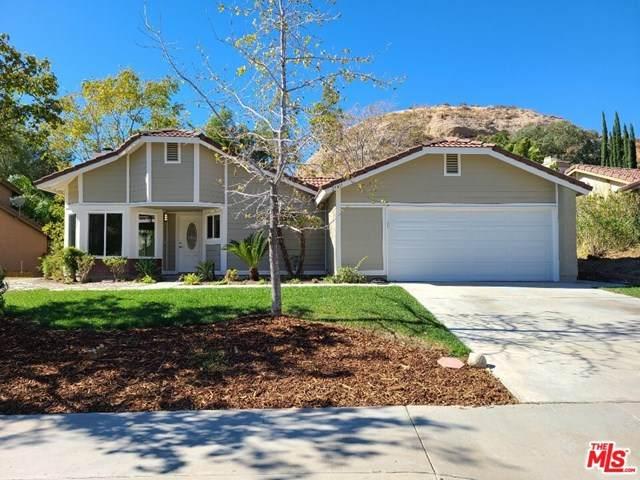 29411 Poppy Meadow Street, Santa Clarita, CA 91387 (#20652144) :: Steele Canyon Realty