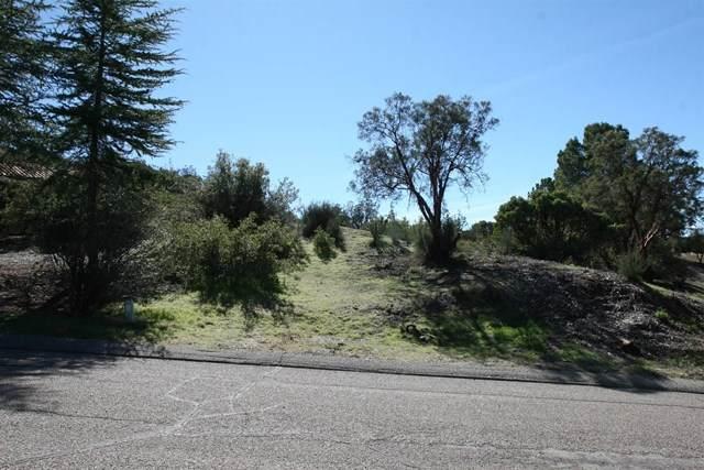 31310 Camino Chico, Warner Springs, CA 92086 (#200051504) :: American Real Estate List & Sell