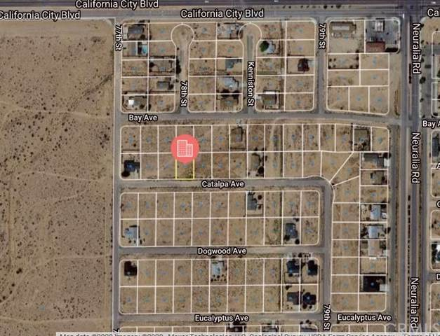 0 Catalpa Avenue, California City, CA 93505 (#CV20240046) :: Bathurst Coastal Properties