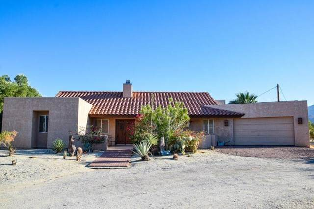 3155 Wagon Road, Borrego Springs, CA 92004 (#NDP2002613) :: The Costantino Group | Cal American Homes and Realty
