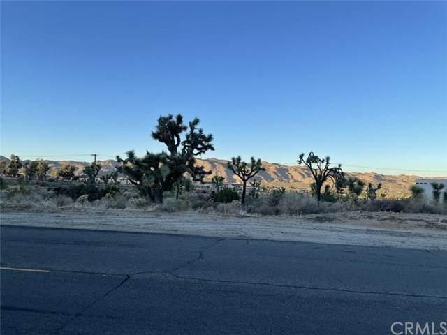 56236 Joshua Drive, Yucca Valley, CA 92284 (#JT20241534) :: RE/MAX Masters