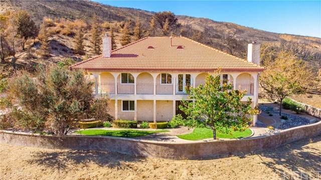 19520 Pine Canyon Road, Lake Hughes, CA 93532 (#SR20238646) :: The Costantino Group | Cal American Homes and Realty