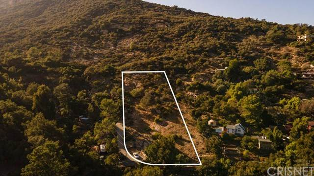 939 Fernwood Pacific Drive, Topanga, CA 90290 (#SR20241177) :: American Real Estate List & Sell