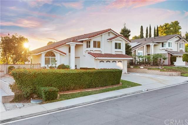 739 Colusa Drive, Walnut, CA 91789 (#TR20242165) :: Bathurst Coastal Properties