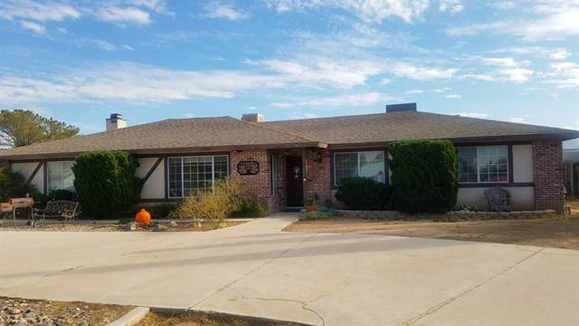 18457 Damon Drive, Hesperia, CA 92345 (#530086) :: Realty ONE Group Empire