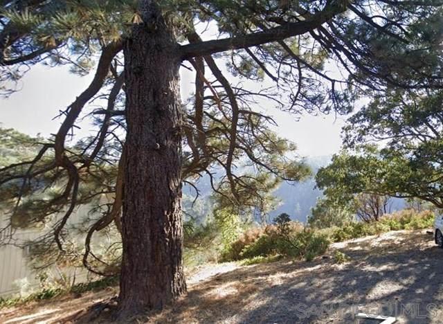 1608 Edge Cliff Dr, Lake Arrowhead, CA 92352 (#200052072) :: Bathurst Coastal Properties