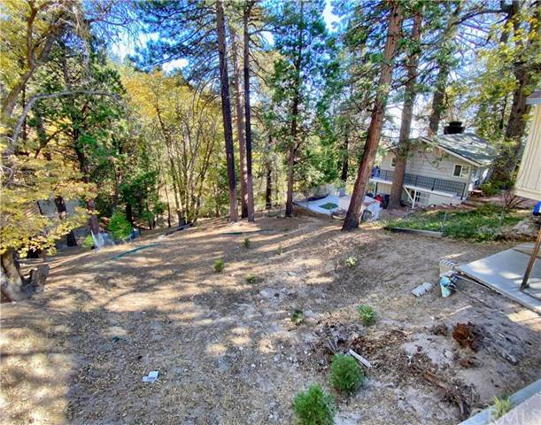 30907 All View Drive, Running Springs, CA 92382 (#EV20242902) :: The Costantino Group | Cal American Homes and Realty
