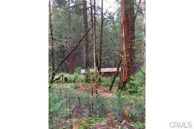 6760 Best Road, Mariposa, CA 95338 (#MP20242944) :: Twiss Realty
