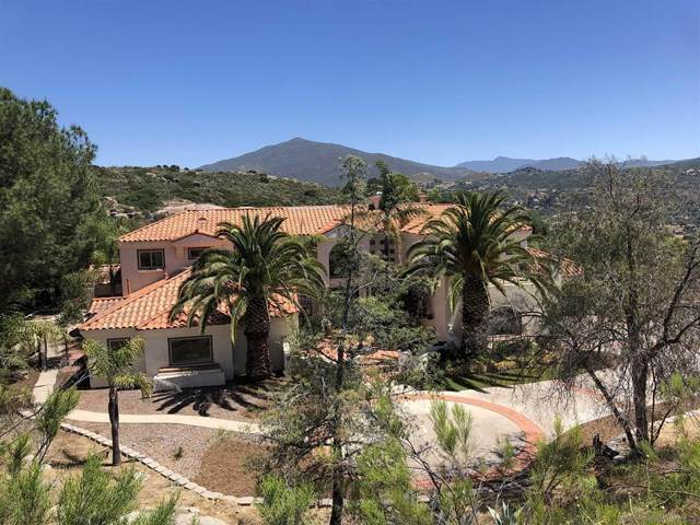 2916 Firebrand Dr, Alpine, CA 91901 (#200052141) :: Steele Canyon Realty