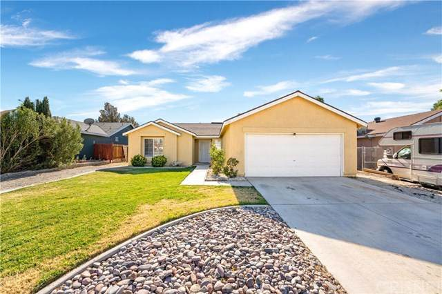 1032 Oakwood Lane, Rosamond, CA 93560 (#SR20243528) :: The Costantino Group | Cal American Homes and Realty