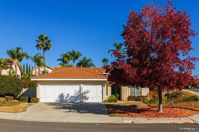 802 Amethyst Ct, Oceanside, CA 92057 (#PTP2001598) :: The Costantino Group | Cal American Homes and Realty