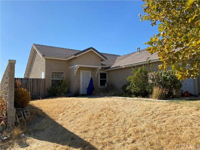 2500 Summerchase Avenue, Rosamond, CA 93560 (#RS20244037) :: Arzuman Brothers