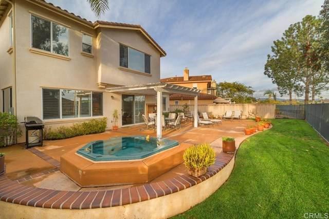 3554 Knollwood Drive, Carlsbad, CA 92010 (#NDP2002818) :: American Real Estate List & Sell