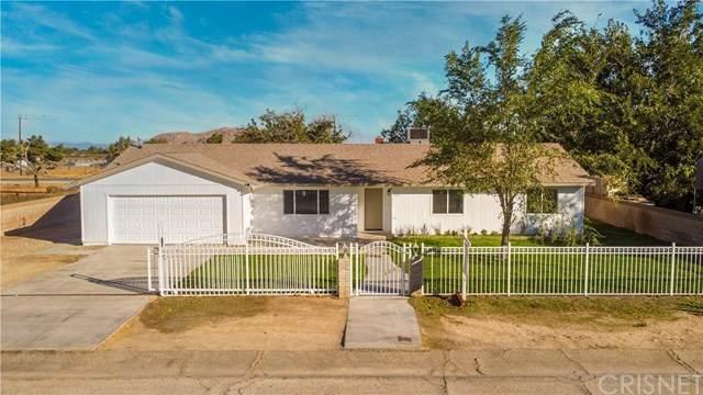 16311 Coolwater Avenue, Lake Los Angeles, CA 93591 (#SR20239666) :: Bathurst Coastal Properties