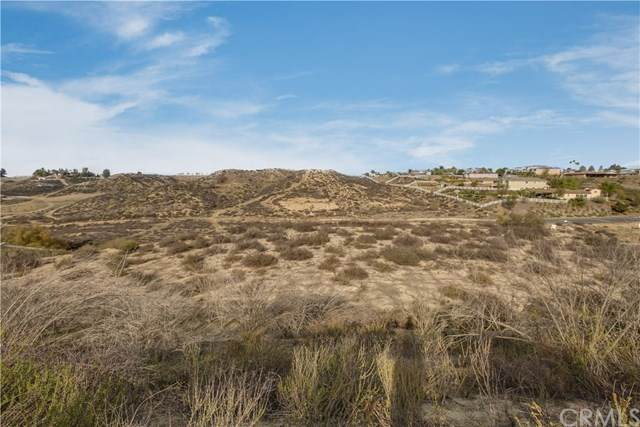 0 Santiago Road, Temecula, CA 92592 (#SW20242190) :: Realty ONE Group Empire