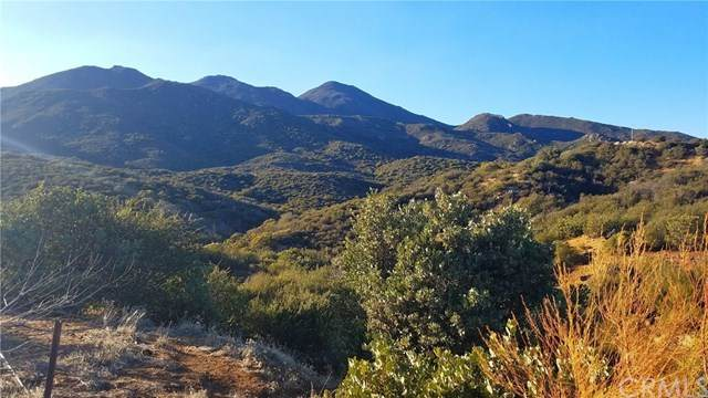 31472 Chihuahua Valley Road, Warner Springs, CA 92086 (#ND20244426) :: American Real Estate List & Sell