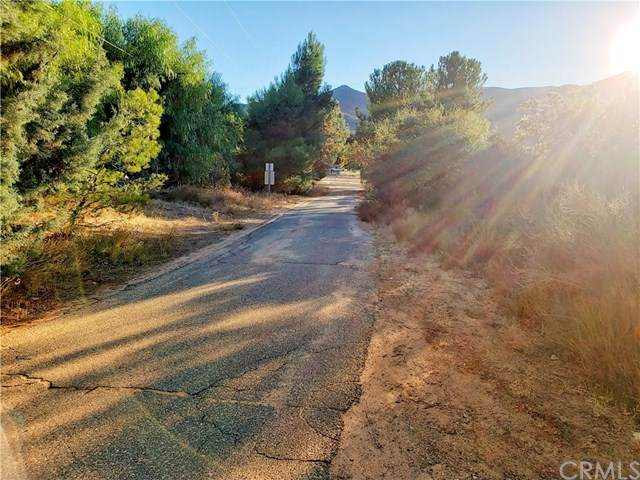 4050 Father Serra, Warner Springs, CA 92086 (#ND20244496) :: American Real Estate List & Sell
