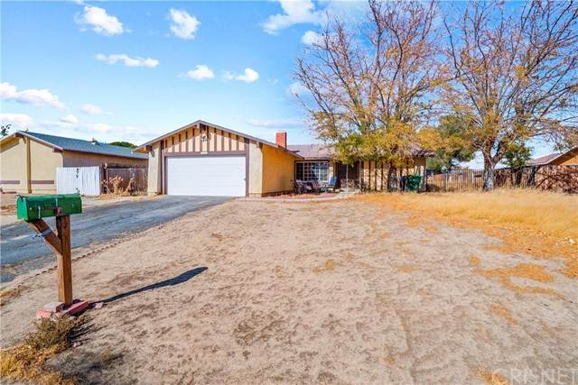 21375 Applewood Drive, Rosamond, CA 93505 (#SR20244537) :: The Costantino Group | Cal American Homes and Realty