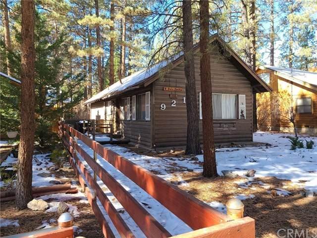 921 Peter Avenue, Big Bear, CA 92314 (#EV20244587) :: Steele Canyon Realty
