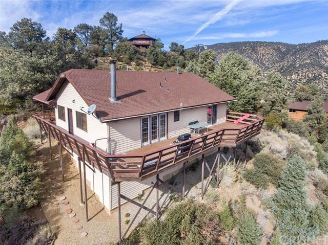 2020 Saint Anton Drive, Pine Mountain Club, CA 93222 (#SR20242236) :: Steele Canyon Realty