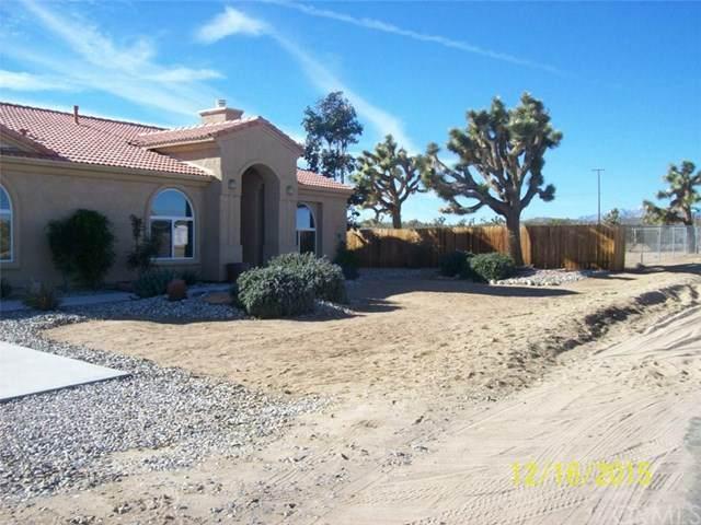 3893 Lexington, Yucca Valley, CA 92284 (#JT20243531) :: Z Team OC Real Estate