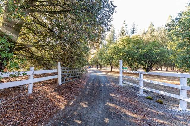 3037 E Westfall Road, Mariposa, CA 95338 (#MP20244396) :: Twiss Realty
